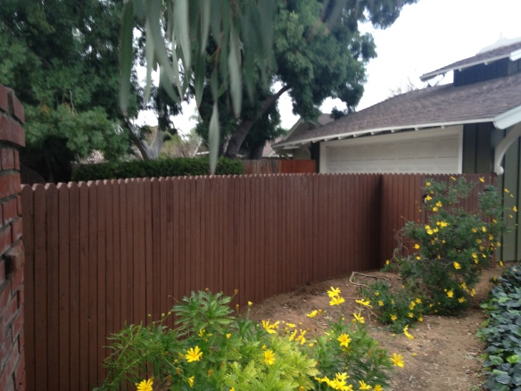 New Fence Install